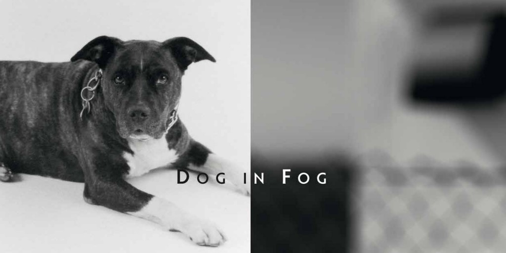 LABOR-Dog in Fog-1