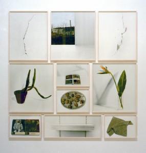 """Bibliothek II"", 1999, 226 x 226 cm, s-w-Barytpapier koloriert, Edition 2"