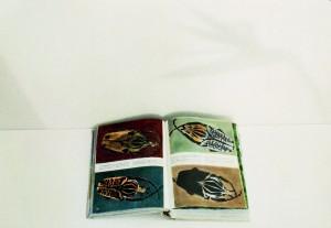 "Detail aus ""Bibliothek II"", 1999, 41 x 58 cm, s-w-Barytpapier koloriert, Edition 2."