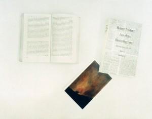 """Walser - Goya"", 1998, 42 x 59 cm, s-w-Barytpapier koloriert, Edition 2."
