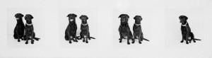 Maggy und Zucca (Lissabon, 2004), 2006, 29,5 x 87,5 cm, Silbergelatineabzug, Edition 3 +1 e.A