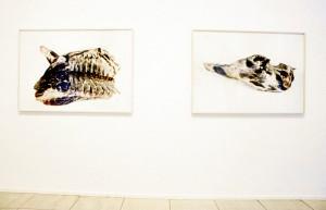 """Ausstellungsansicht """"Freunde, Fleisch, Blumen"""", Galerie Springer&Winckler, Berlin 2003, Vorderviertel Hinterviertel"""