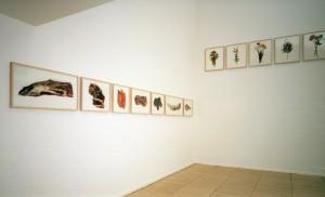 """Ausstellungsansicht """"Freunde, Fleisch, Blumen"""", Galerie Springer&Winckler, Berlin 2003"""