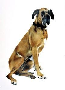 Susi, 2002, 86,5 x 123 cm, s-w-Barytpapierkoloriert, edition 2