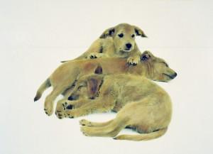 Wurf I, 2002, 47,5 x 66 cm, s-w-Barytpapier koloriert, Edition 2