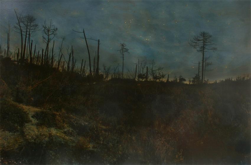 Nachtstück Algarinho (Bairrada Portugal), 2015, 91 x 158 cm, s-w-Barytpapier koloriert, Edition 2