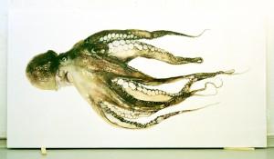 Krake, 1998, 100 x 190 cm , s/w-Barytpapier koloriert, Edition 2