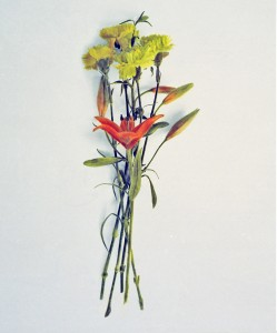 Blumenstrauß Nr.10, 1992-2001, 58 x 49 cm, s-w-Barytpapier koloriert, Edition 2