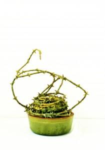 Zimmerpflanze Nr.4, 1997, 90 x 30 x 35 cm, Wachs, Holz, Plexiglas