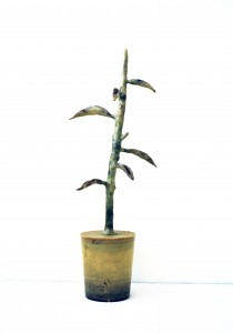 Zimmerpflanze Nr.2, 1996, 90 x 26 x 22 cm, Wachs, Holz, Plexiglas