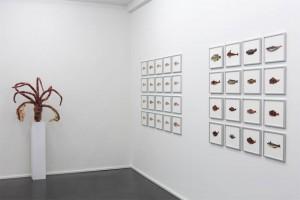 Ausstellungsansicht Galerie Kuckei+Kuckei Berlin, 2014.