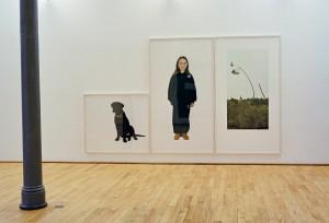 Meggy, Ana / Bairrada, 188 x 315 cm, 2004