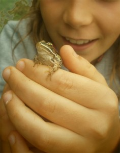frog-in-hand