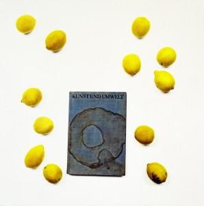 Stilleben mit Buch und Zitronen, 62 x 62 cm, 2001, s-w-Barytpapier koloriert, Edition 2.