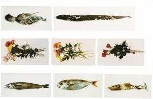 """Sequenz aus """"Friso de peixes e de flores"""", 1992/93, Höhe der Fotografien 38 cm, s-w-Barytpapier koloriert"""