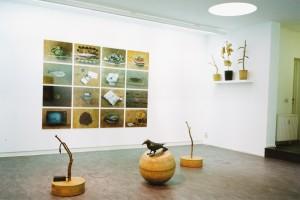 Ausstellungsansicht Galerie Van Laere Contemporary Art Anwerpen, 1998.