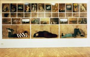 Frimaire, 1995/96, 36 tlg., insgesamt 226 x 550 cm, s/w-Barytpapier koloriert, Edition 2+I