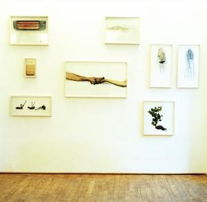 "Ausstellungsansicht ""no jardim"", Galerie Kuckei+Kuckei, Berlin, 2001"